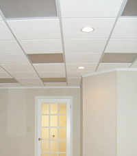 Basement Ceiling Tiles for a project we worked on in Penobscot, Maine